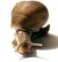 Snail-active купить опт и розница